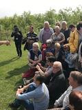 Rendez Vous aux Jardins 2018 -Visites décalées