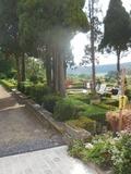 Rendez Vous aux Jardins 2018 -Visite des jardins à la française et à l'italienne. Salon de la nature et du jardinage.