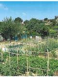 Rendez Vous aux Jardins 2018 -Visites des jardins avec initiation à la biodiversité