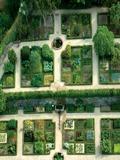 Rendez Vous aux Jardins 2018 -Visites flash présentant le jardin des plantes et arbres médicinaux