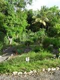 Rendez Vous aux Jardins 2018 -visites guidées atelier