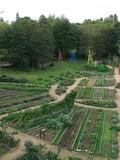 Rendez Vous aux Jardins 2018 -Visites guidées du jardin