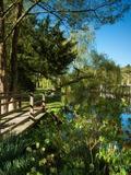 Rendez Vous aux Jardins 2018 -Visite libre du parc du château de Saint-Germain-de-Livet