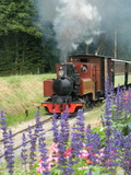 Journées du patrimoine 2016 -Voyage en autorail ou train à vapeur