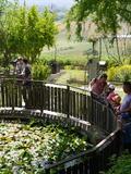 Rendez Vous aux Jardins 2018 -Week-end de découverte du Jardin Conservatoire des Plantes Tinctoriales