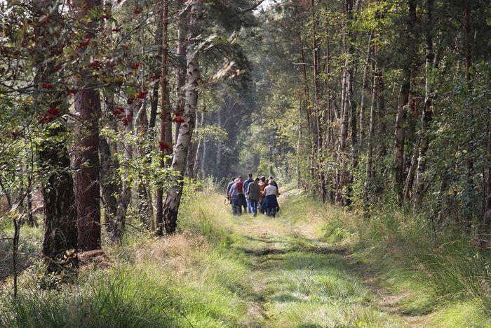 Erlebniswanderung ins Tote Moor. Klimaspeicher Moor im Naturpark Steinhuder Meer.