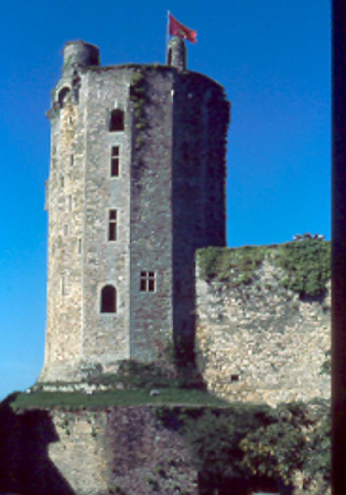 Journées du patrimoine 2019 - Visite guidée du château de Bricquebec