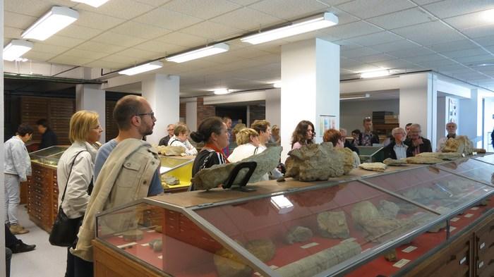 Journées du patrimoine 2019 - Visite guidée du musée de Géologie