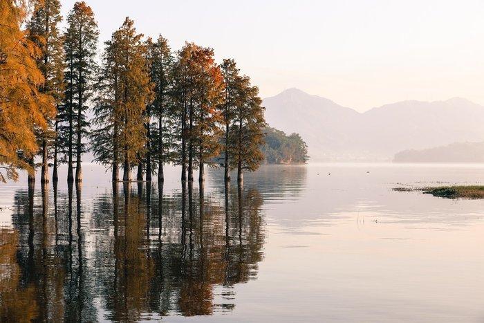 Quelles différences ? Une plongée au cœur de la grande histoire de ces écosystèmes et de leurs utilisations humaines.