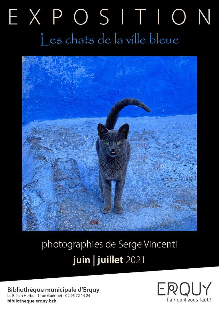 Exposition : les chats de la ville bleue