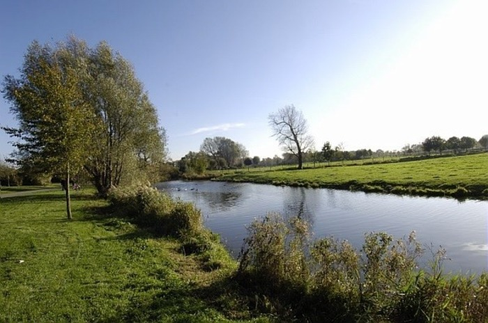 Balade: Biodiversité proche