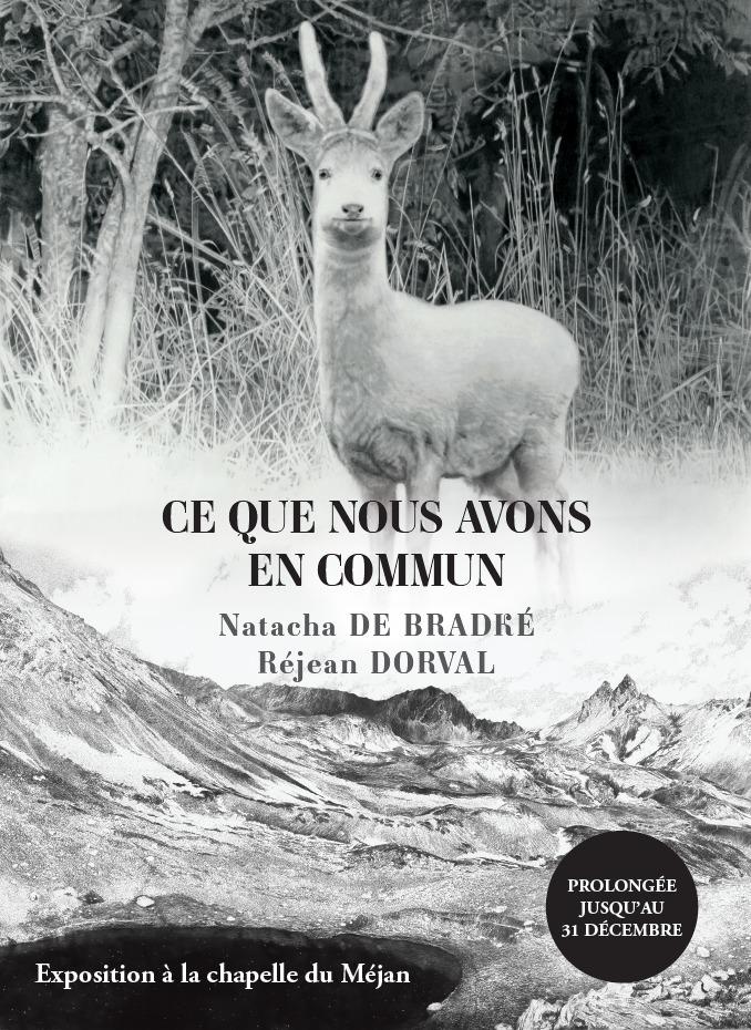 À l'occasion de la semaine Agir pour le vivant du 22 au 29 août, les fabuleux dessins de Réjean Dorval et Natacha de Bradké s'installent à la chapelle du Méjan