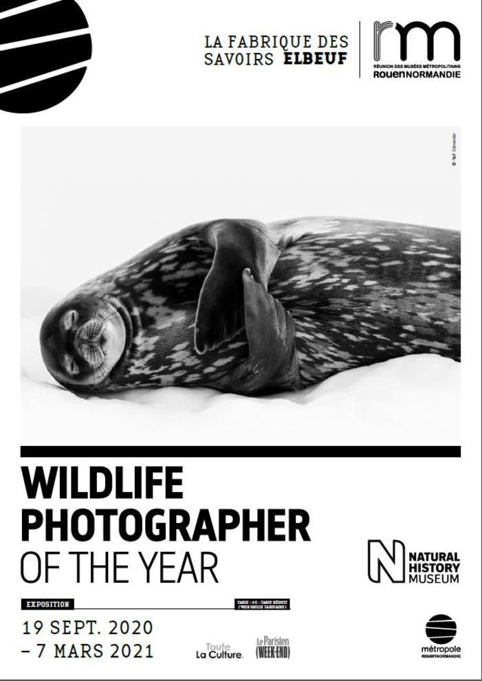 Journées du patrimoine 2020 - Exposition Wildlife, Photographer of the Year