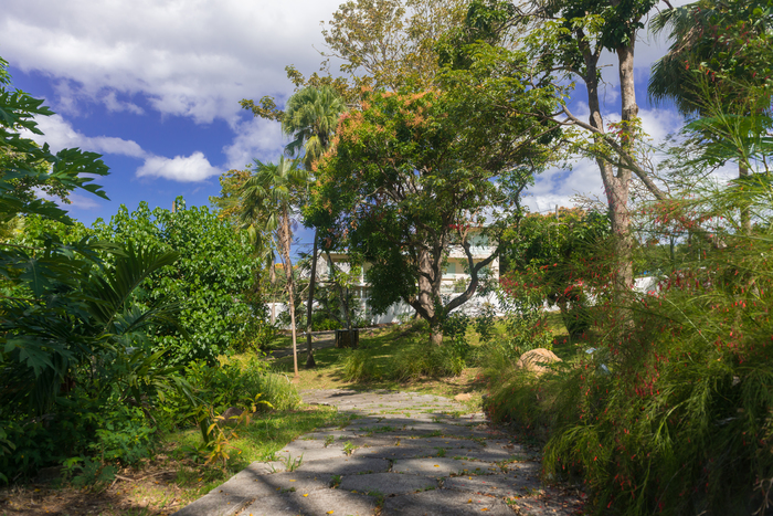 Journées du patrimoine 2020 - Les espèces du jardin botanique en Quizz