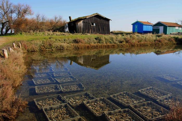Journées du patrimoine 2020 - Découverte commentée d'un authentique village ostréicole