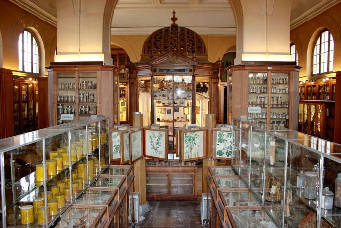 Journées du patrimoine 2019 - Circuit : matière médicale et ouvrages de la Bibliothèque de pharmacie.