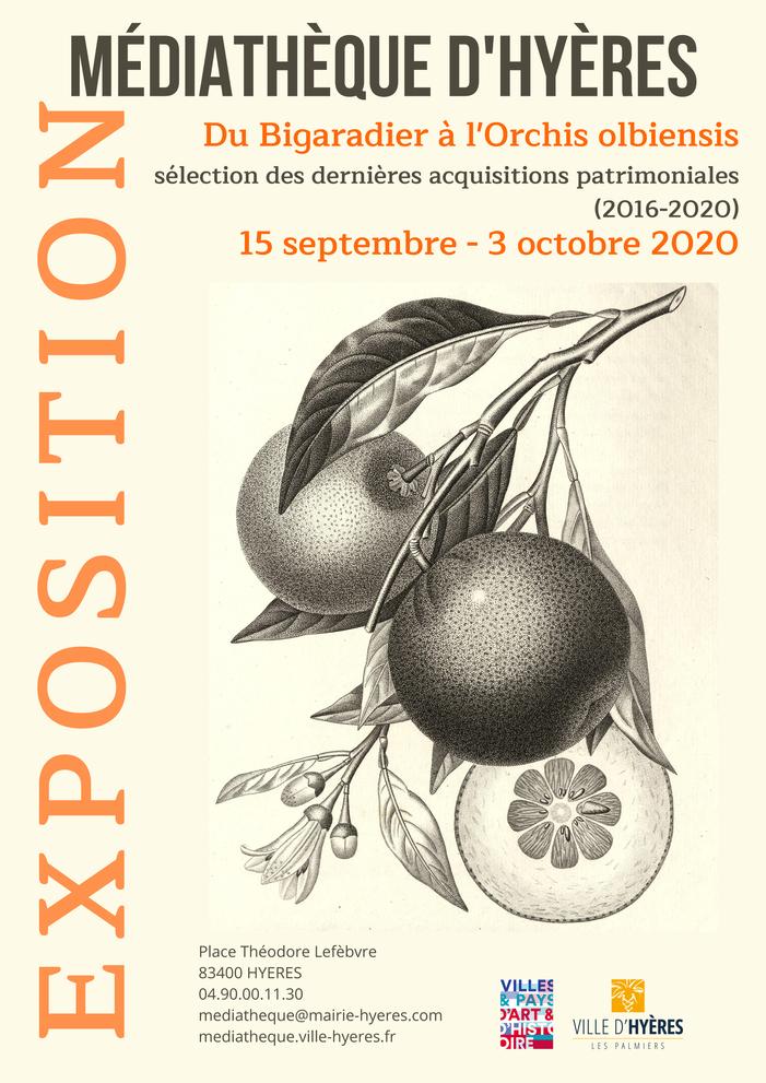 Journées du patrimoine 2020 - Du bigaradier à l'Orchis olbiensis, sélection des dernières acquisitions patrimoniales (2016-2020)