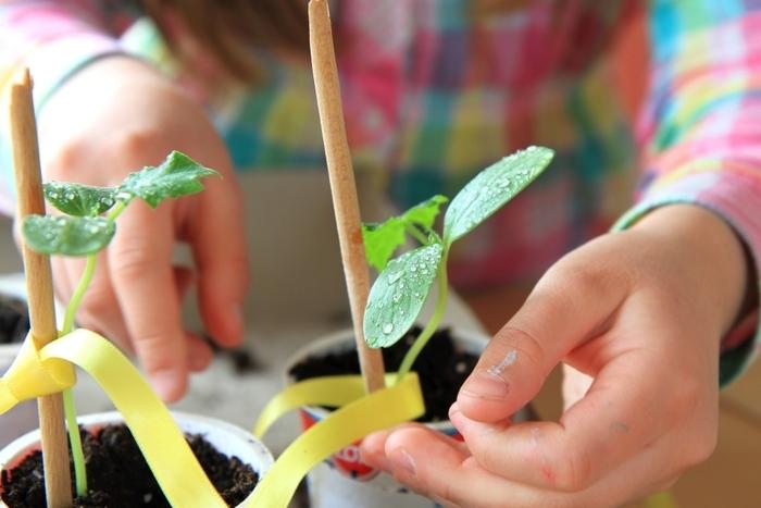 Atelier parents / enfants au Centre Social Flers Sart.