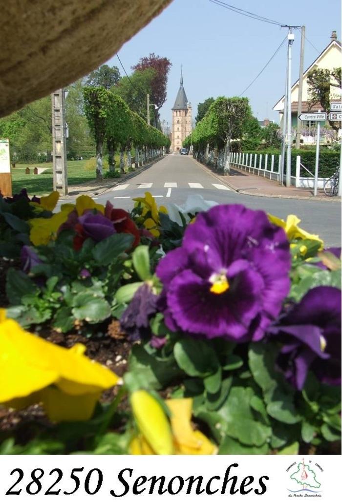 Journées du patrimoine 2019 - Visite guidée de la ville