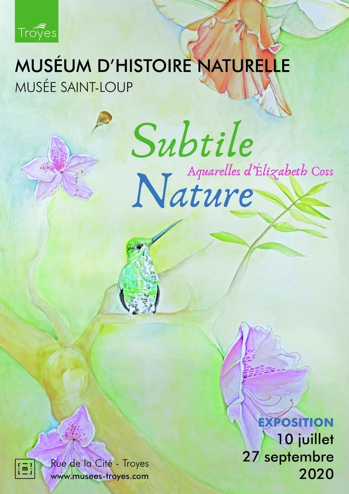 Journées du patrimoine 2020 - Exposition « Subtile nature, aquarelles d'Elizabeth Coss »