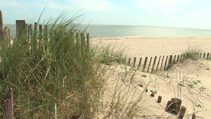 Journées du patrimoine 2020 - Balade découverte des dunes fixées et mobiles