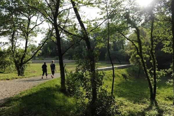 Parc du Cypressat