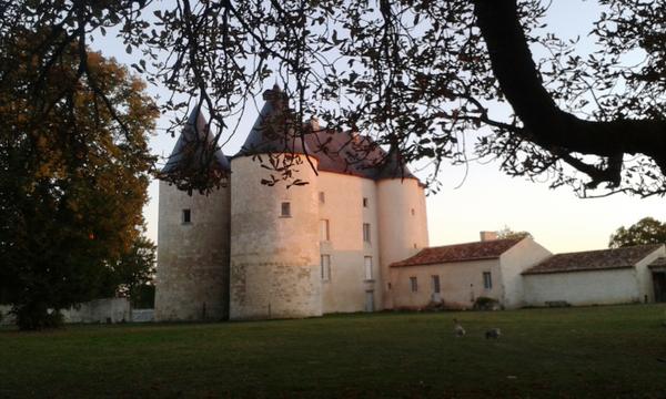 Crédits image : © Château de la Commanderie
