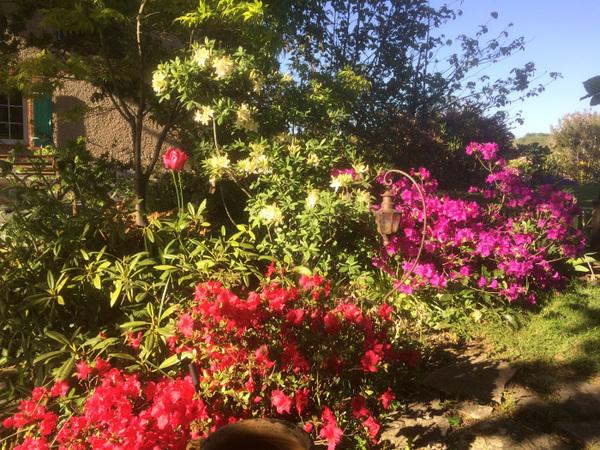 Rendez Vous aux Jardins 2018 -Le jardin de Termi