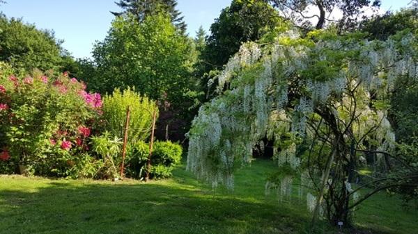 Rendez Vous aux Jardins 2018 -Le Jardin du Goublin