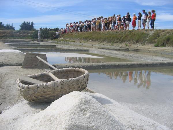 Journées du patrimoine 2019 - Marais salants de la Vie
