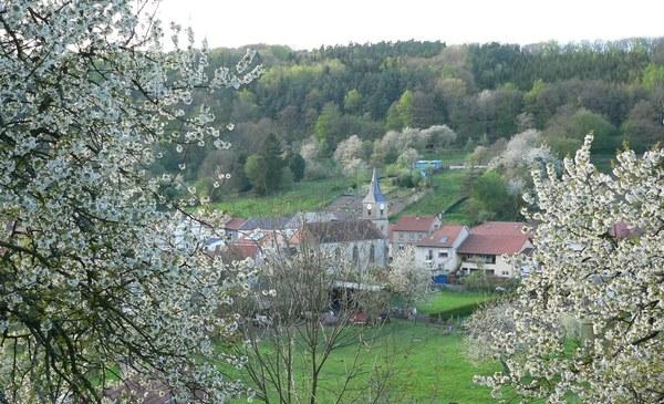 Crédits image : Office de Tourisme de Saint-Avold