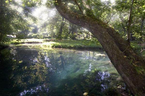 Rendez Vous aux Jardins 2018 -Les Fontaines Bleues du château de Beaulon