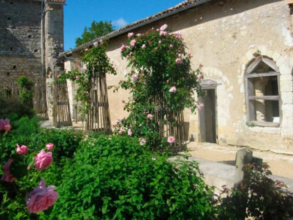 Rendez Vous aux Jardins 2018 -Jardin de l'abbaye de l'Étoile