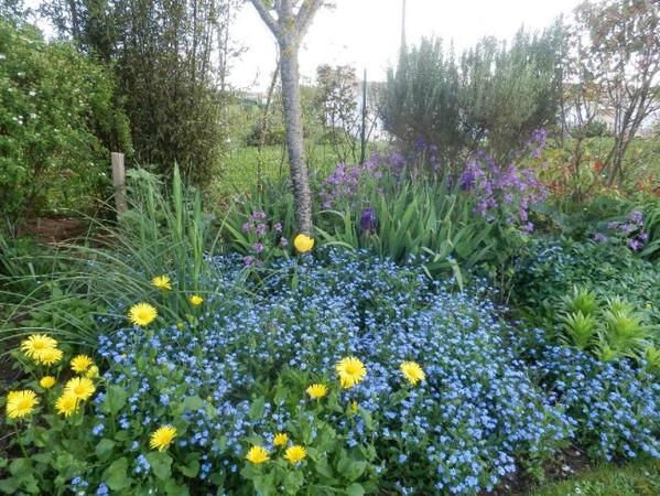 Rendez Vous aux Jardins 2018 -Jardin du Plantis