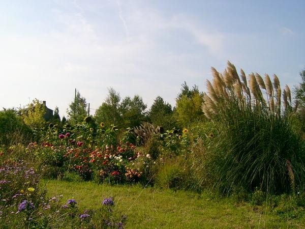 Rendez Vous aux Jardins 2018 -Jardin botanique du val d'yser