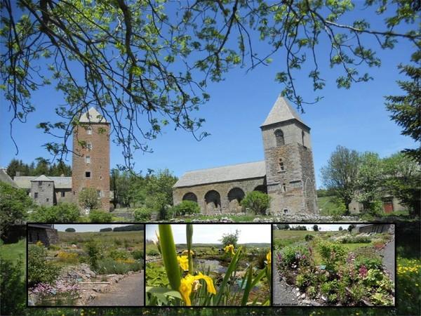 Journées du patrimoine 2017 - Les plantes protégées de l'Aubrac