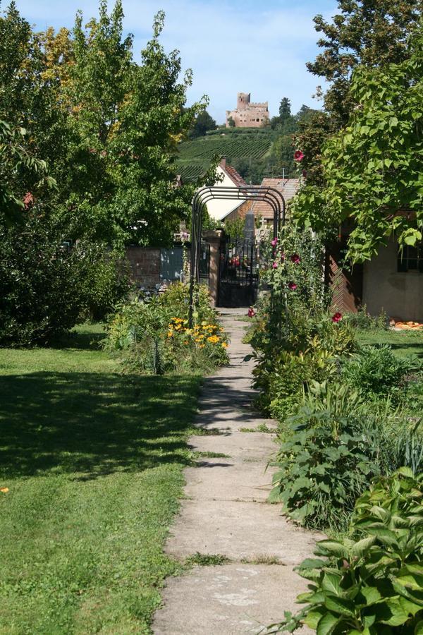 Rendez Vous aux Jardins 2018 -Jardin médiéval de l'Apothicaire