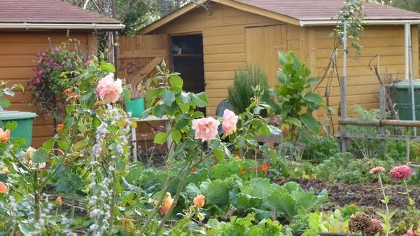 Rendez Vous aux Jardins 2018 -Jardins familiaux Tourn'sol