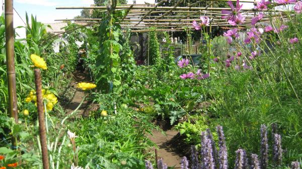 Rendez Vous aux Jardins 2018 -Jardins solidaires partagés du pays rochefortais