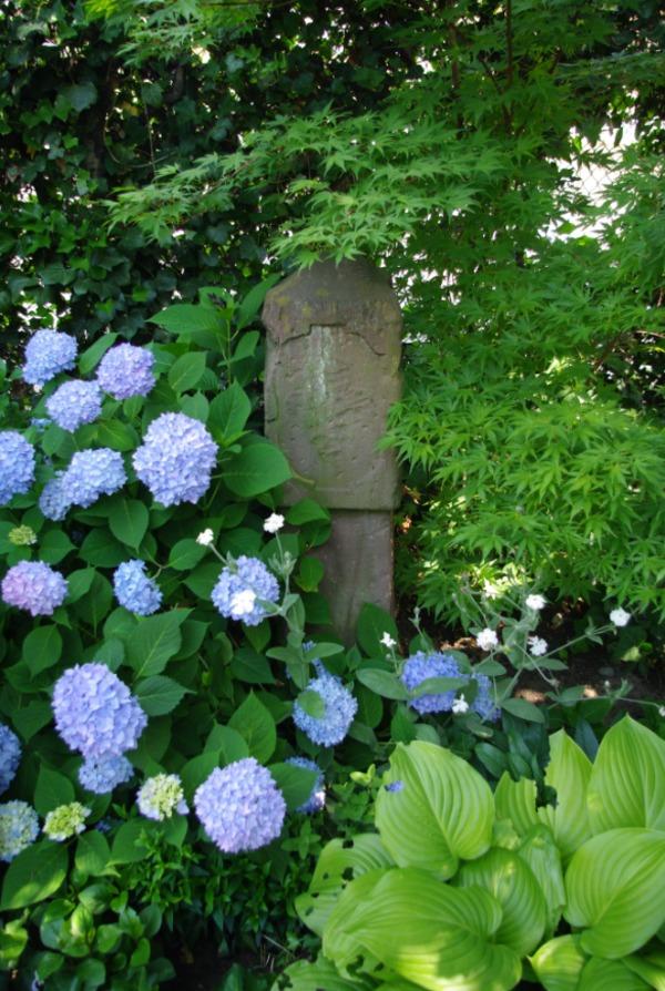 Rendez Vous aux Jardins 2018 -Le jardin enchanté