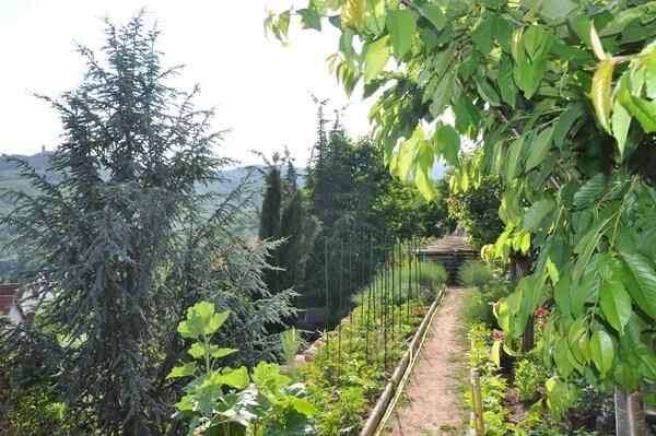 Rendez Vous aux Jardins 2018 -Jardin de l'adret