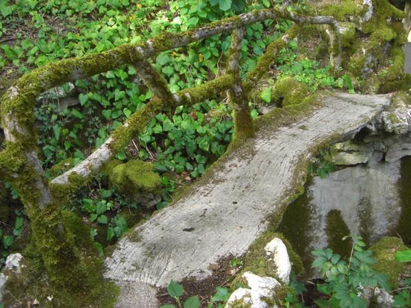Rendez Vous aux Jardins 2018 -Parc du domaine de Lavaux