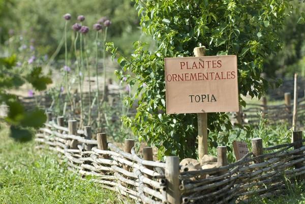 Rendez Vous aux Jardins 2018 -Amphoralis, Jardin gallo-romain