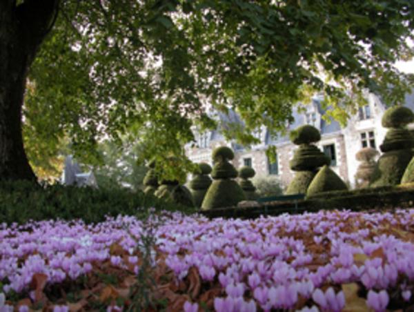 Journées du patrimoine 2020 - Visite du jardin du château du Pin