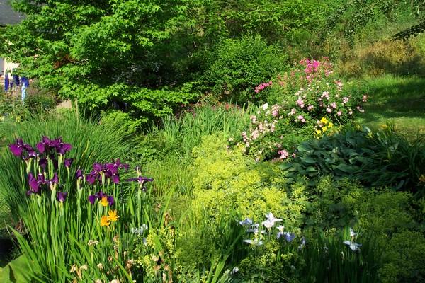 Rendez Vous aux Jardins 2018 -le Jardin du Faudé ,8o, rue du Faudé , 68370 ORBEY