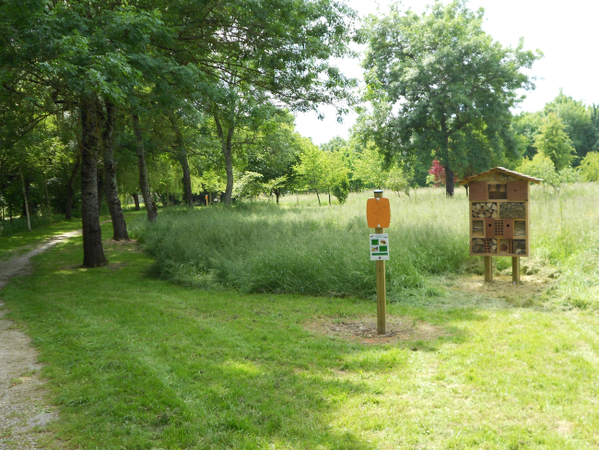 Rendez Vous aux Jardins 2018 -Arboretum du Mail de Seugne