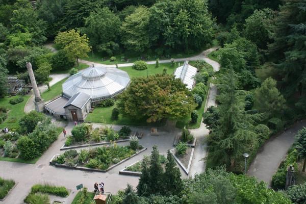Rendez Vous aux Jardins 2018 -Jardin botanique de l'université de strasbourg