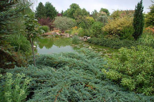 Rendez Vous aux Jardins 2018 -Jardin du Livon