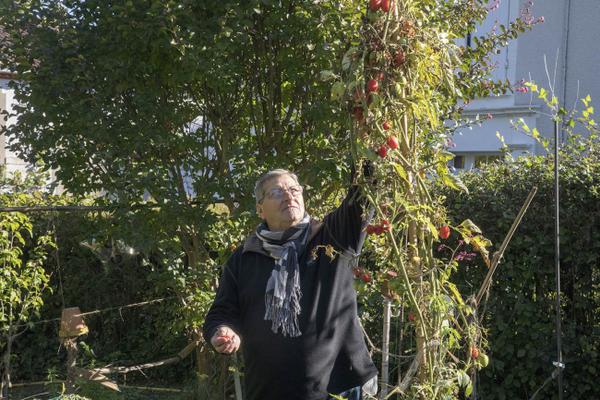 Rendez Vous aux Jardins 2018 -Les jardins de la Lézardière