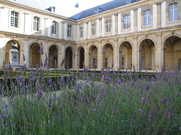 Rendez Vous aux Jardins 2018 -Cloître du musée abbaye Saint-Remi
